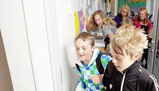Privatskoler, lilleskoler og friskoler